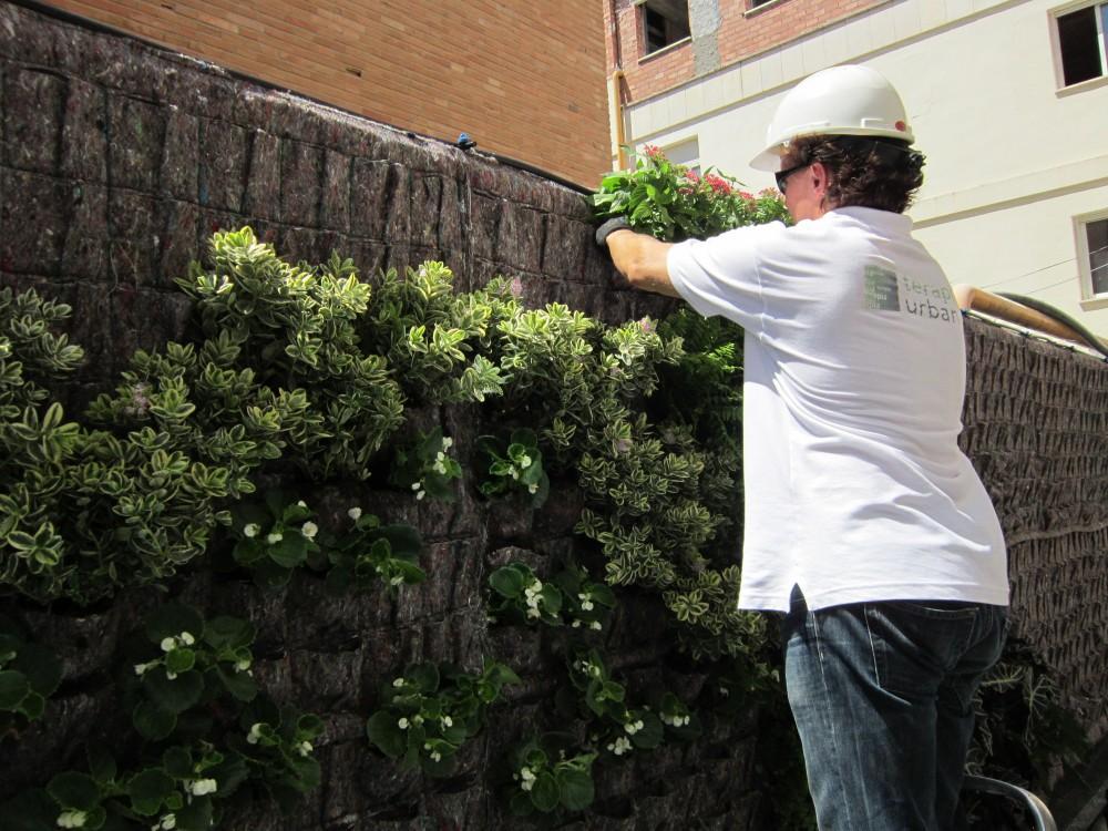 Galer a en detalle jard n vertical en cl nica usp for Jardin vertical sevilla