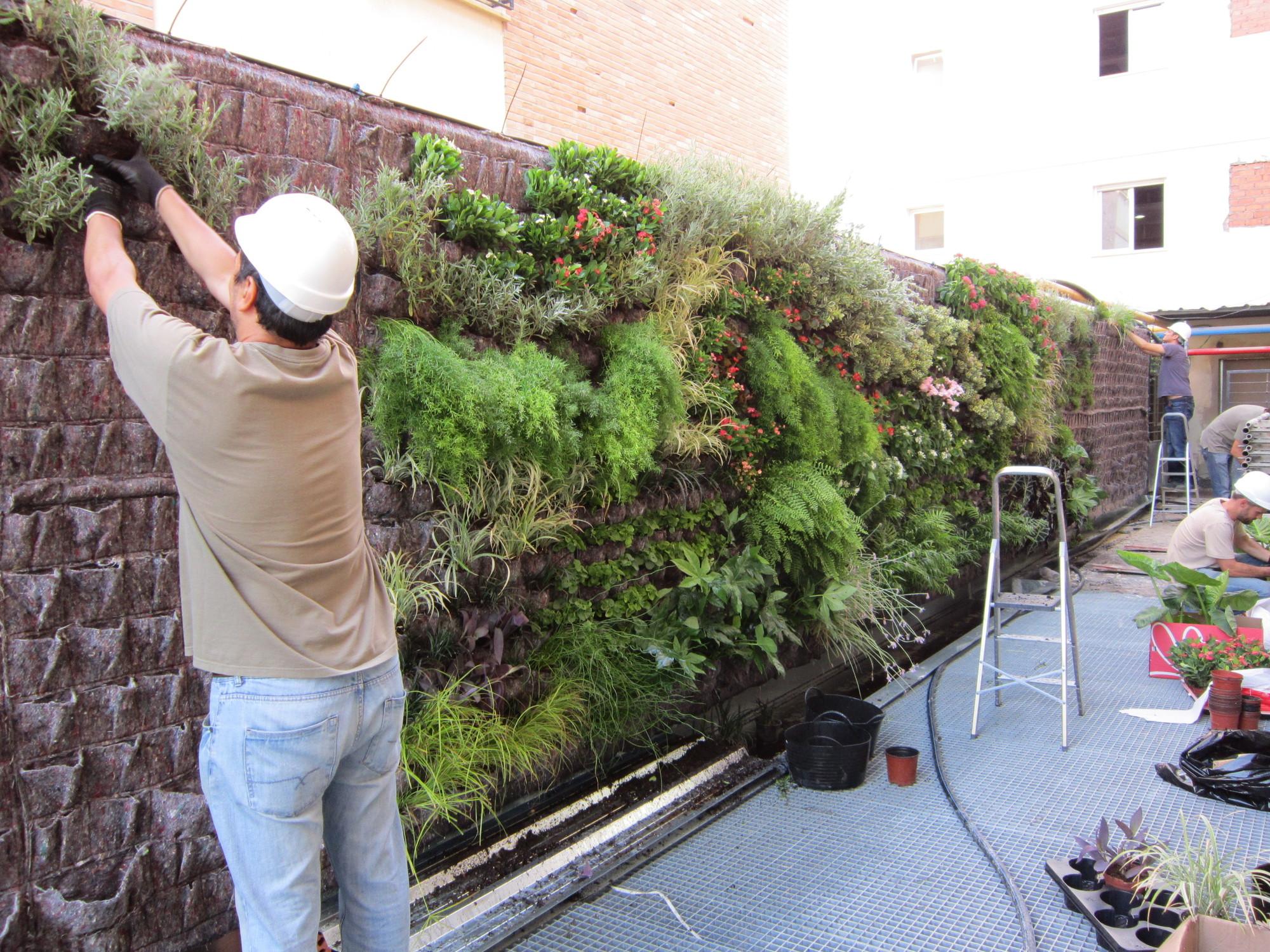 fotos de jardins urbanos : fotos de jardins urbanos:FlorVisión: Los Jardines Verticales