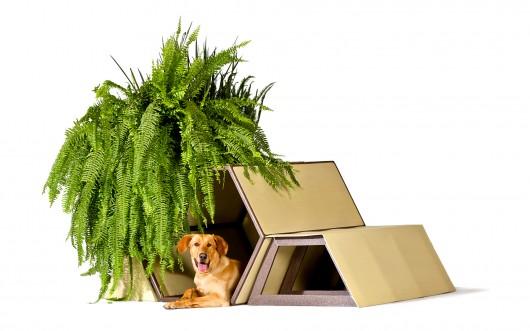 Dogchitecture Taller 13