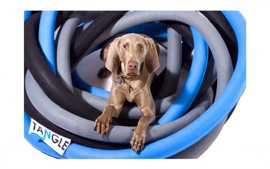 Casas de perro Dogchitecture a-001