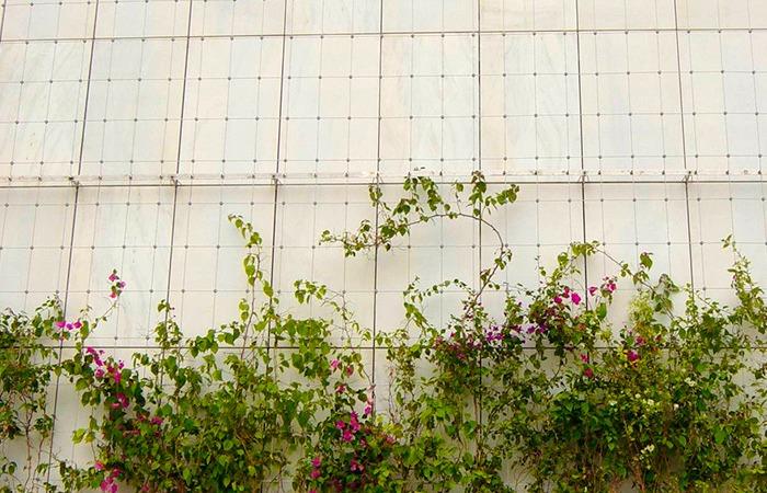 Galer a en detalle jardines verticales 10 for Jardines verticales mexico